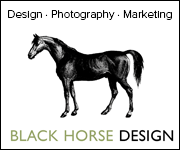 Black Horse Design (Derbyshire Horse)