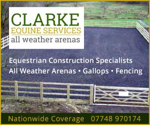 Clarke Equine Services 2020 (Derbyshire Horse)