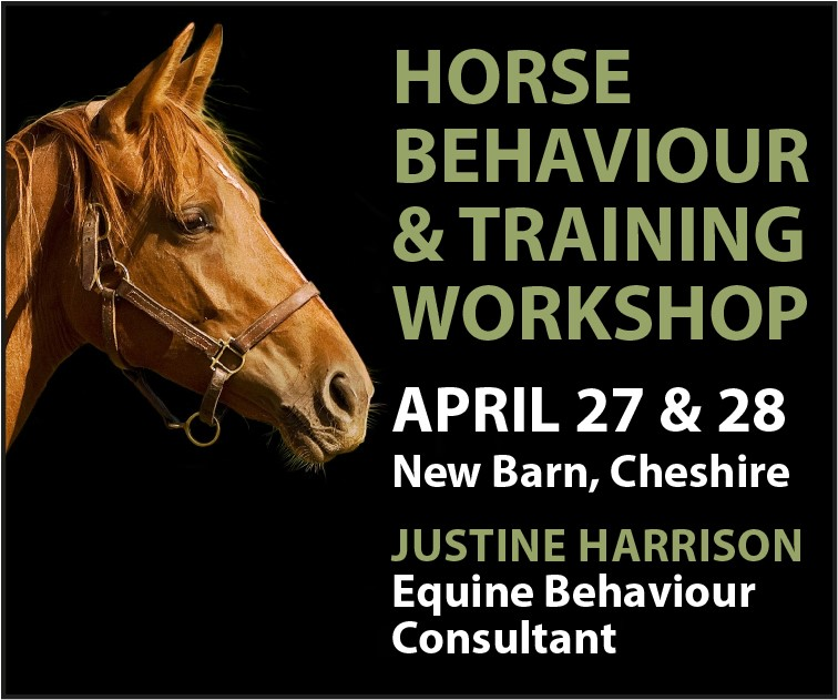 Justine Harrison Workshop April 2019 (Derbyshire Horse)