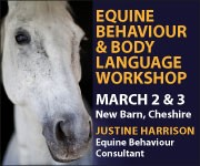 Justine Harrison Workshop March 2019 (Derbyshire Horse)