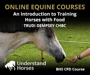 UH - An Introduction To Training Horses With Food (Derbyshire Horse)